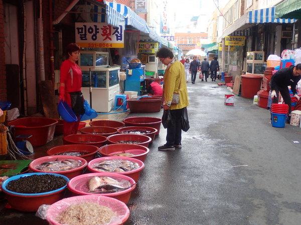 亀浦市場  釜山市 北区 水産物 河の幸